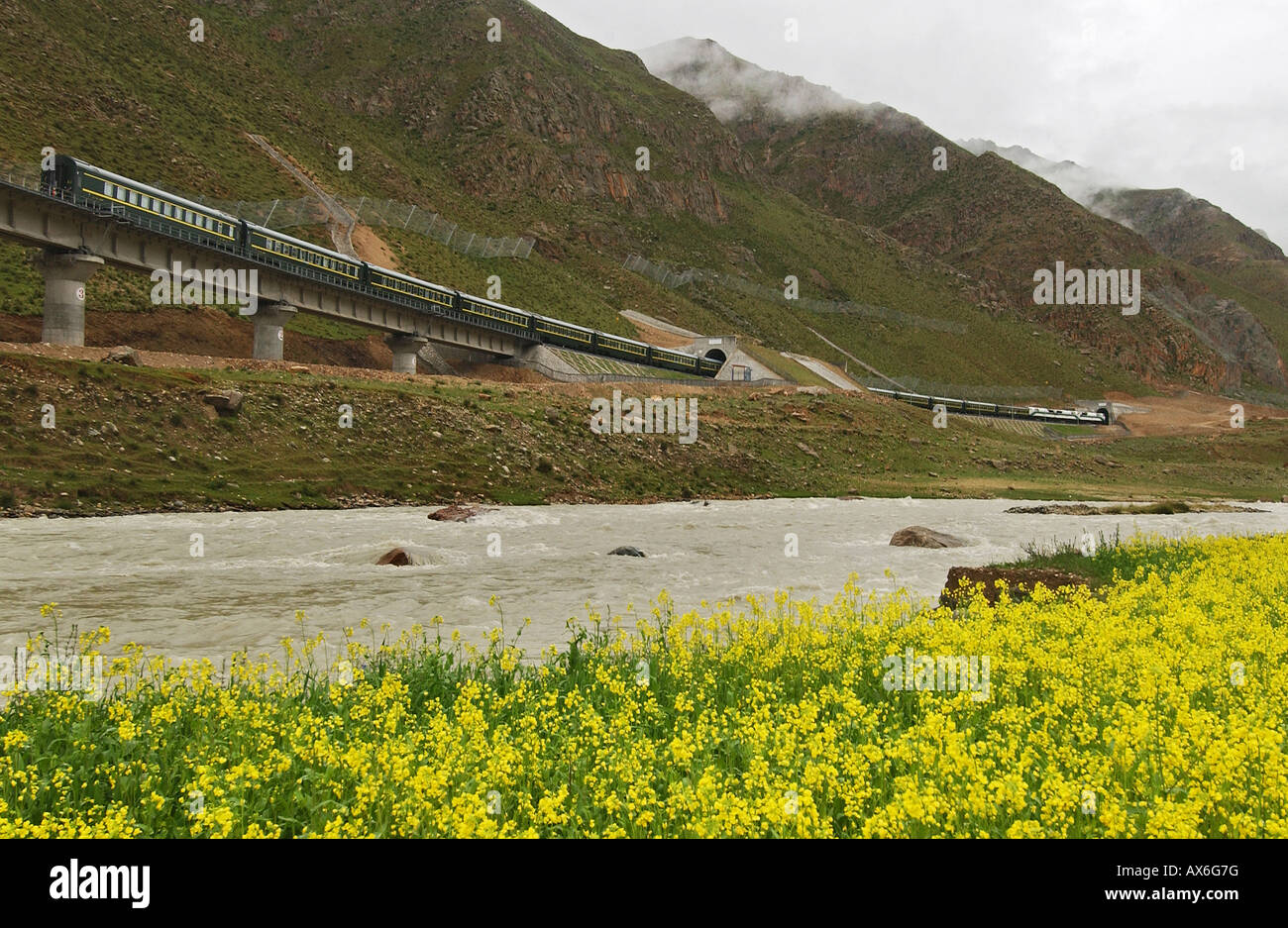 A train passes through a tunnel of the Tibet railway, which opened in July 2006. - Stock Image