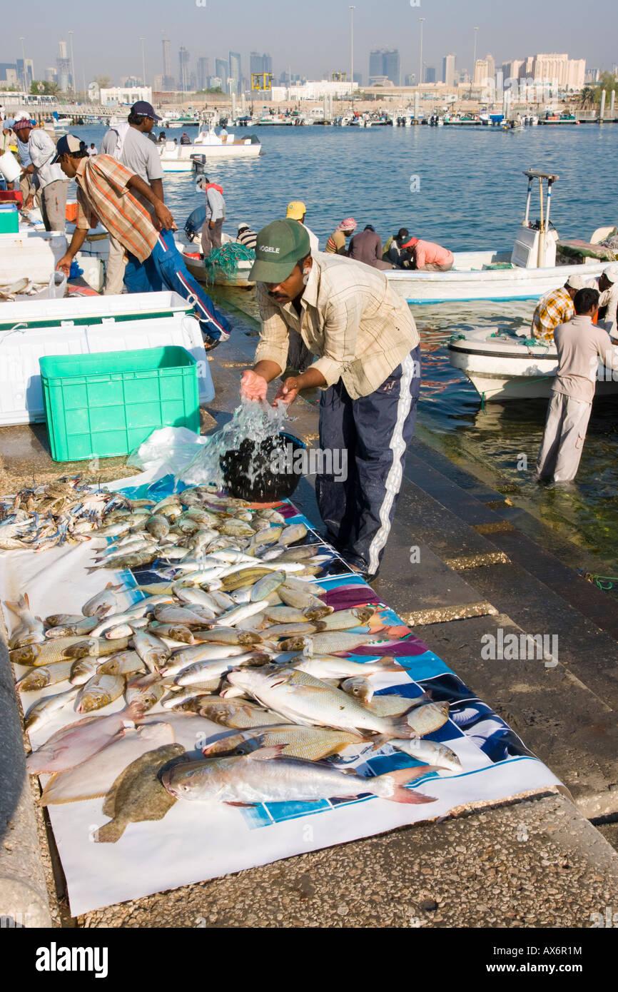Qatar Fish Stock Photos & Qatar Fish Stock Images - Alamy