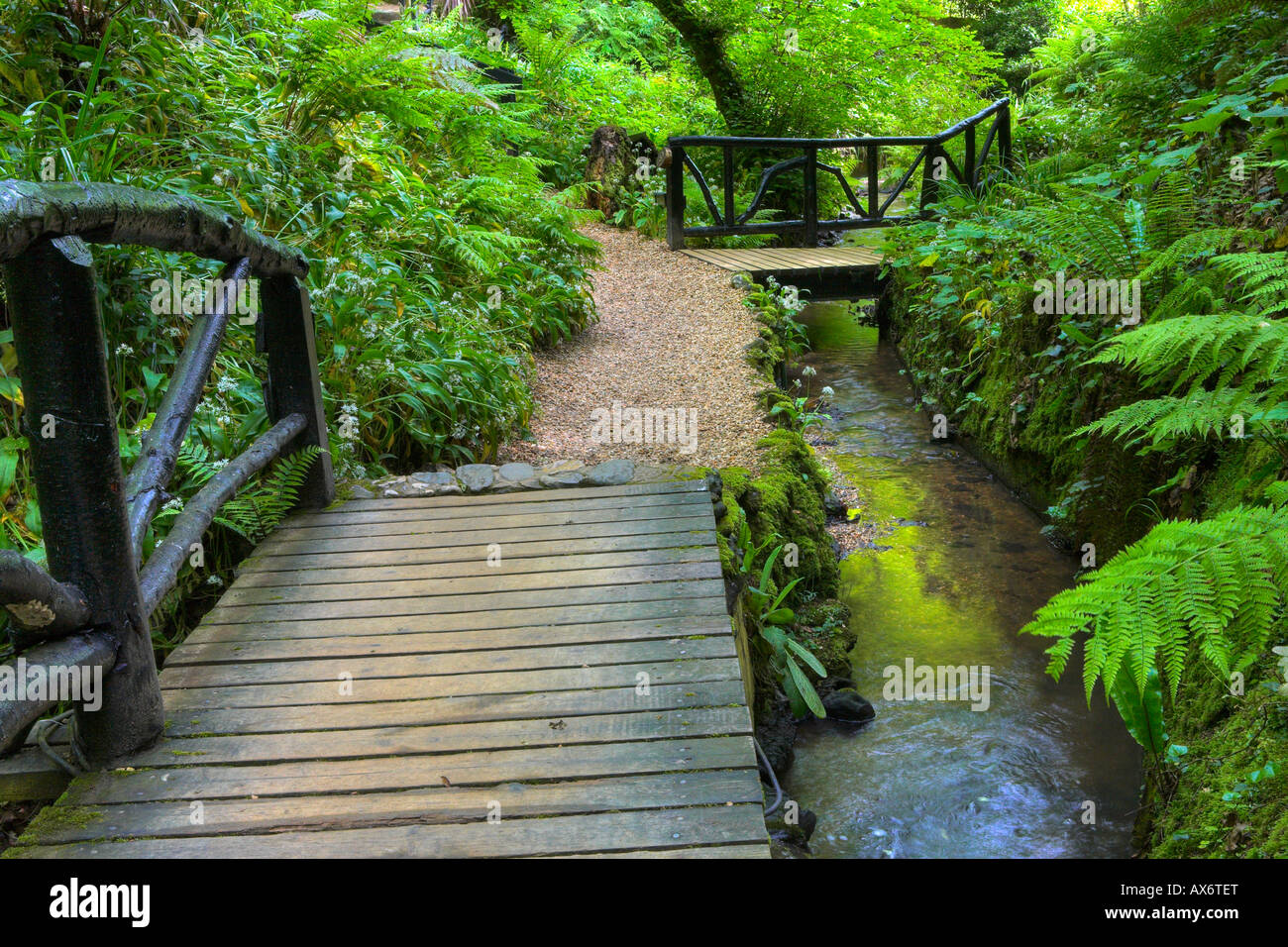 Walkways through the lush valley of Shanklin Chine, Isle of Wight - Stock Image