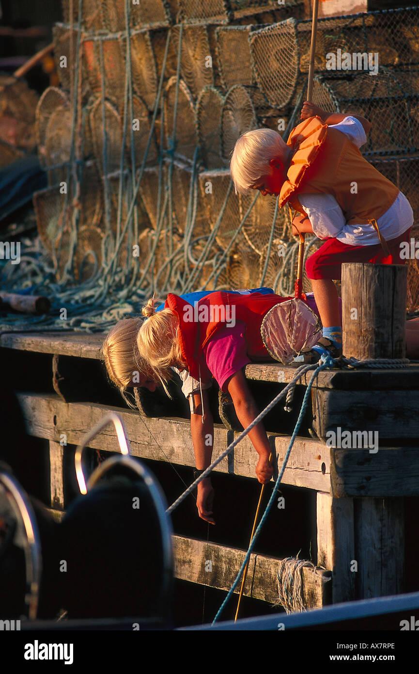 Kinder angeln nach Krebsen, Reusen, Havstensund Schweden Stock Photo