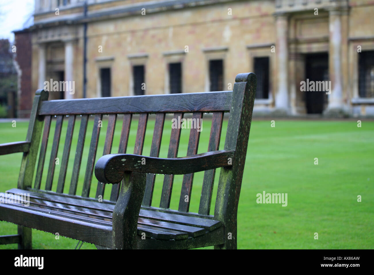 Terrific Trinity College Cambridge Wooden Bench On The Lawns In Ibusinesslaw Wood Chair Design Ideas Ibusinesslaworg
