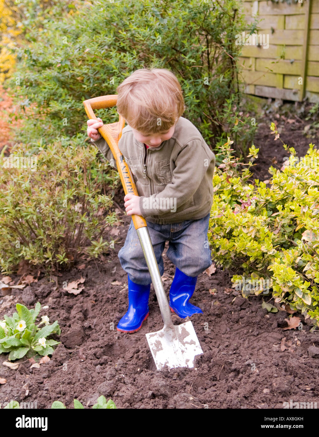 Two Year Old Boy Digging In The Garden Sussex Uk Stock