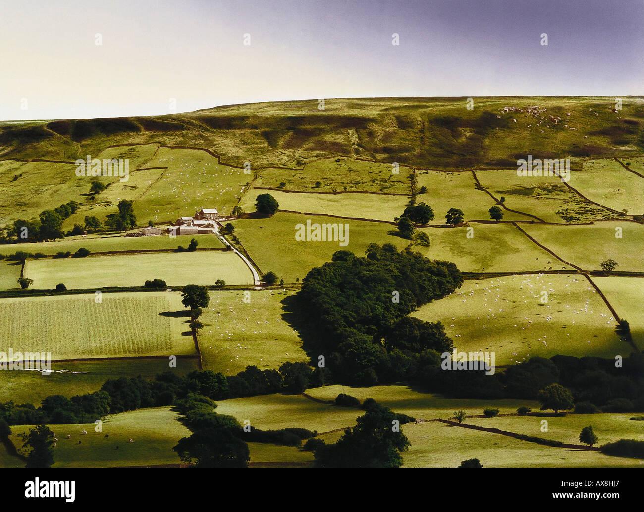 E. George, Gott schuetze dieses Haus, Farmland, Yorkshire Dales Yorkshire, Great Britain Stock Photo