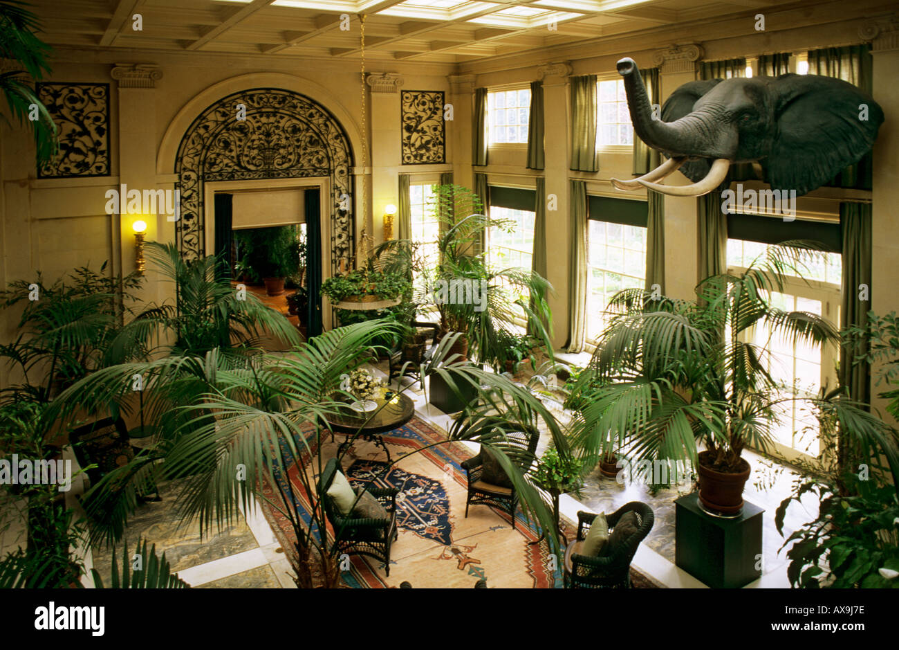 Conservatory With Elephant Head Trophy George Eastman House And Museum  Rochester New York State USA
