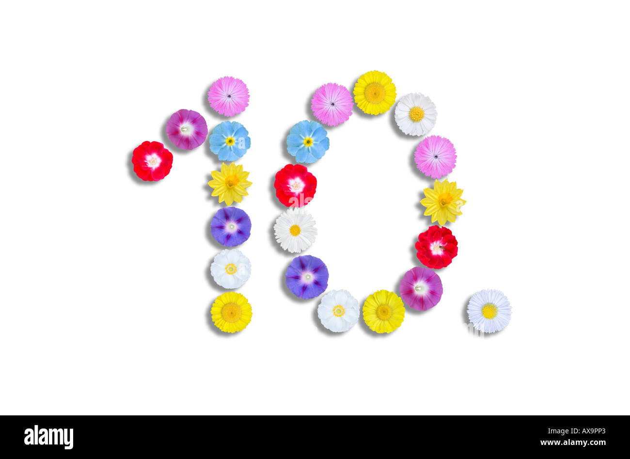 number 10 written with flower heads 10th stock photo 9586146 alamy