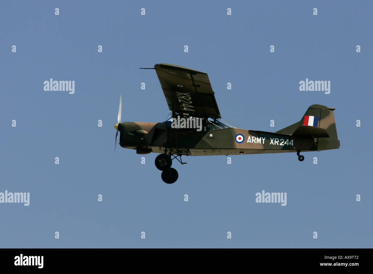 British Army Air Corps Historic Flight Auster XR 244 RIAT 2005 RAF Fairford Gloucestershire England UK - Stock Image