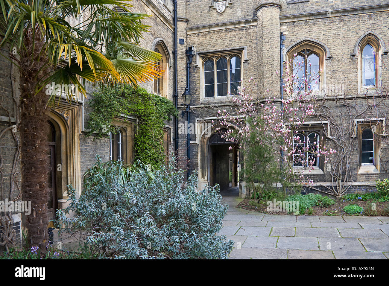 Peterhouse college. Cambridge. Cambridgeshire. East Anglia. UK. - Stock Image