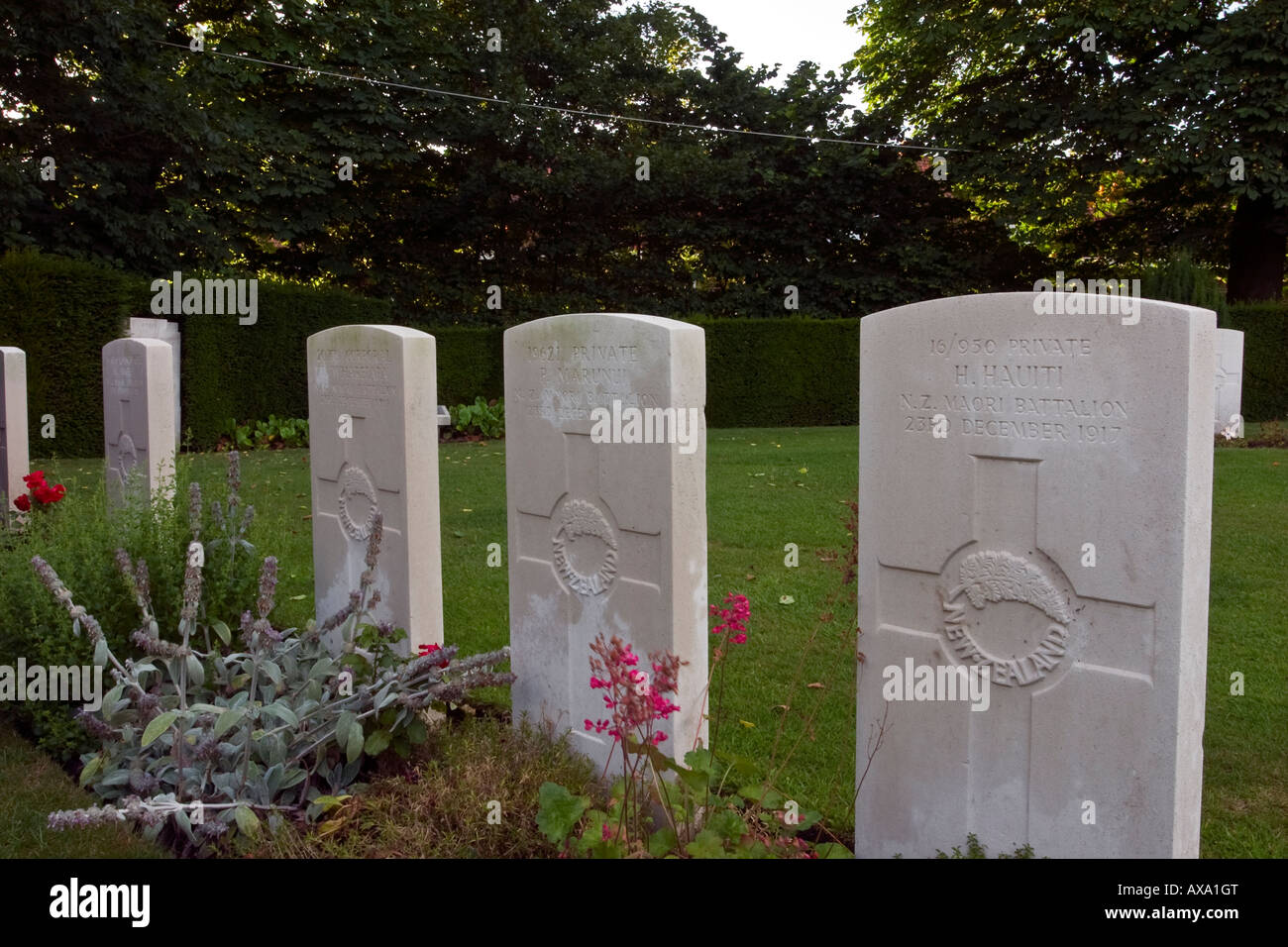 Line of graves of soldiers from Maori Battalion who died in WW1 - Ramparts cemetery Lille Gate Ypres Belgium Stock Photo