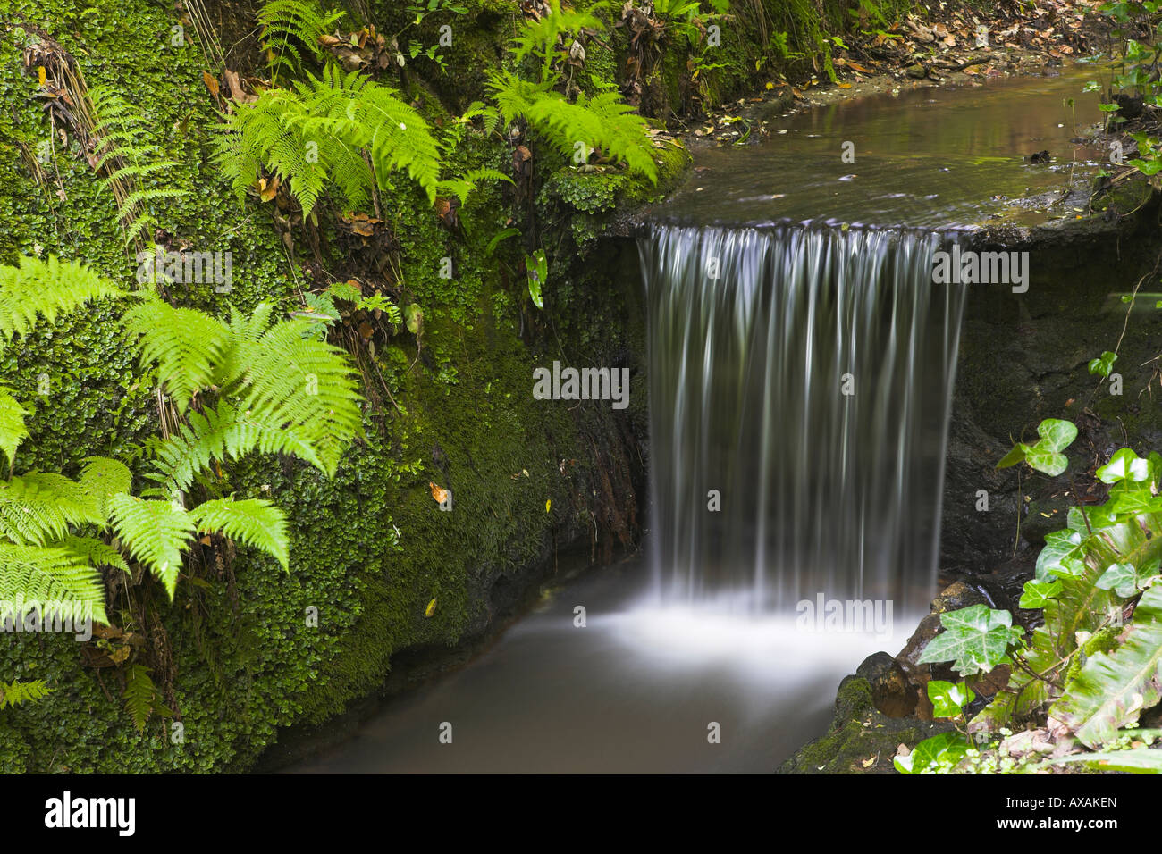 Waterfall at Shanklin Chine on the Isle of Wight - Stock Image