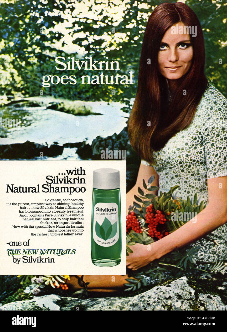 Shampoo Advertisement Stock Photos & Shampoo Advertisement Stock