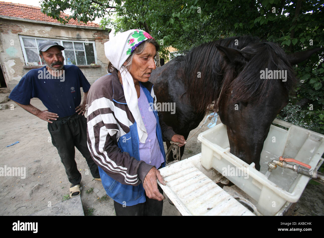Two million gypsies are living in Bulgaria which is 10 of the population Gypsies or Roma are discriminated by native - Stock Image