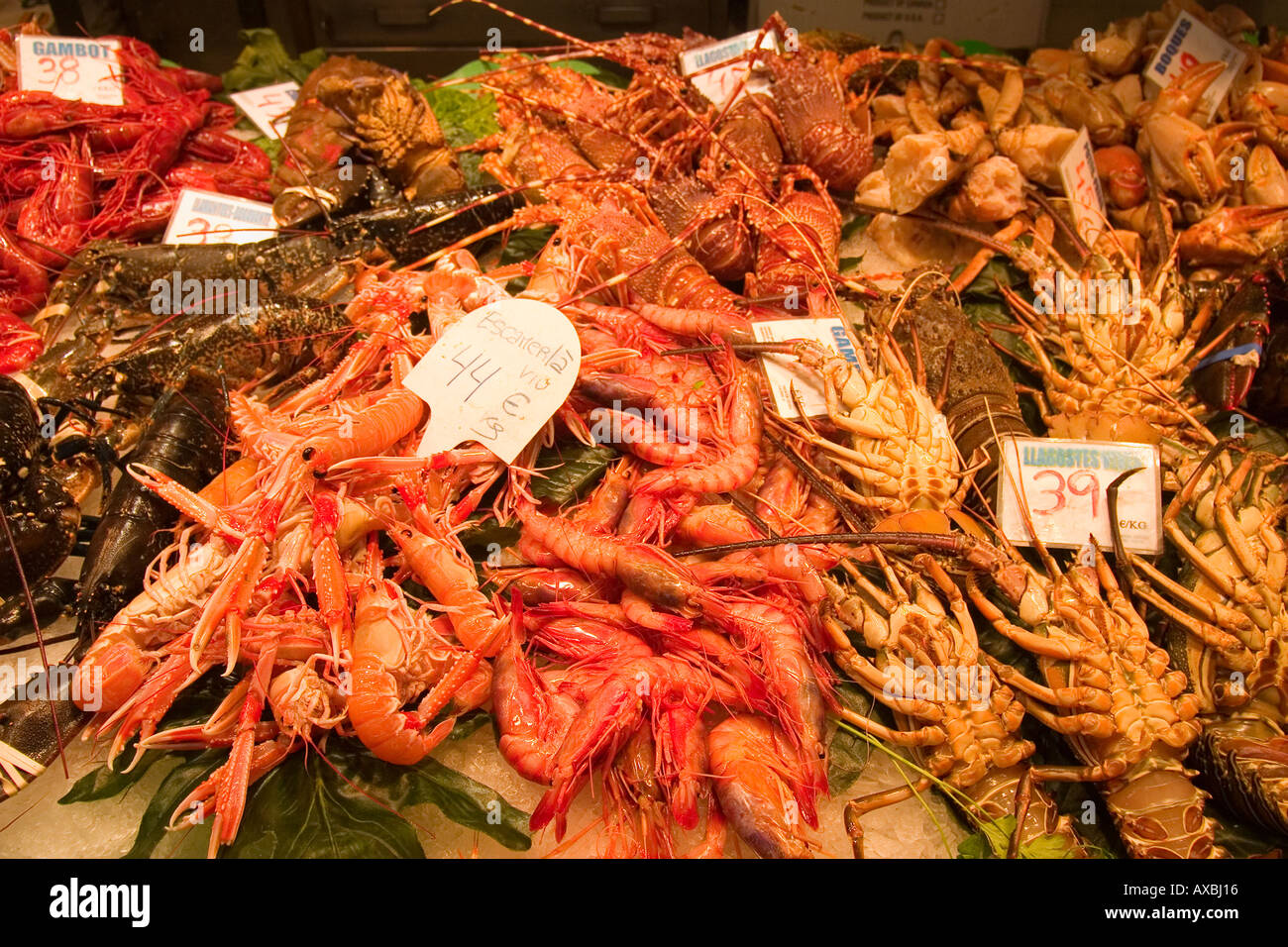 Spain Barcelona Market hall Mercat de la Boqueria fresh fish seefood prawns - Stock Image