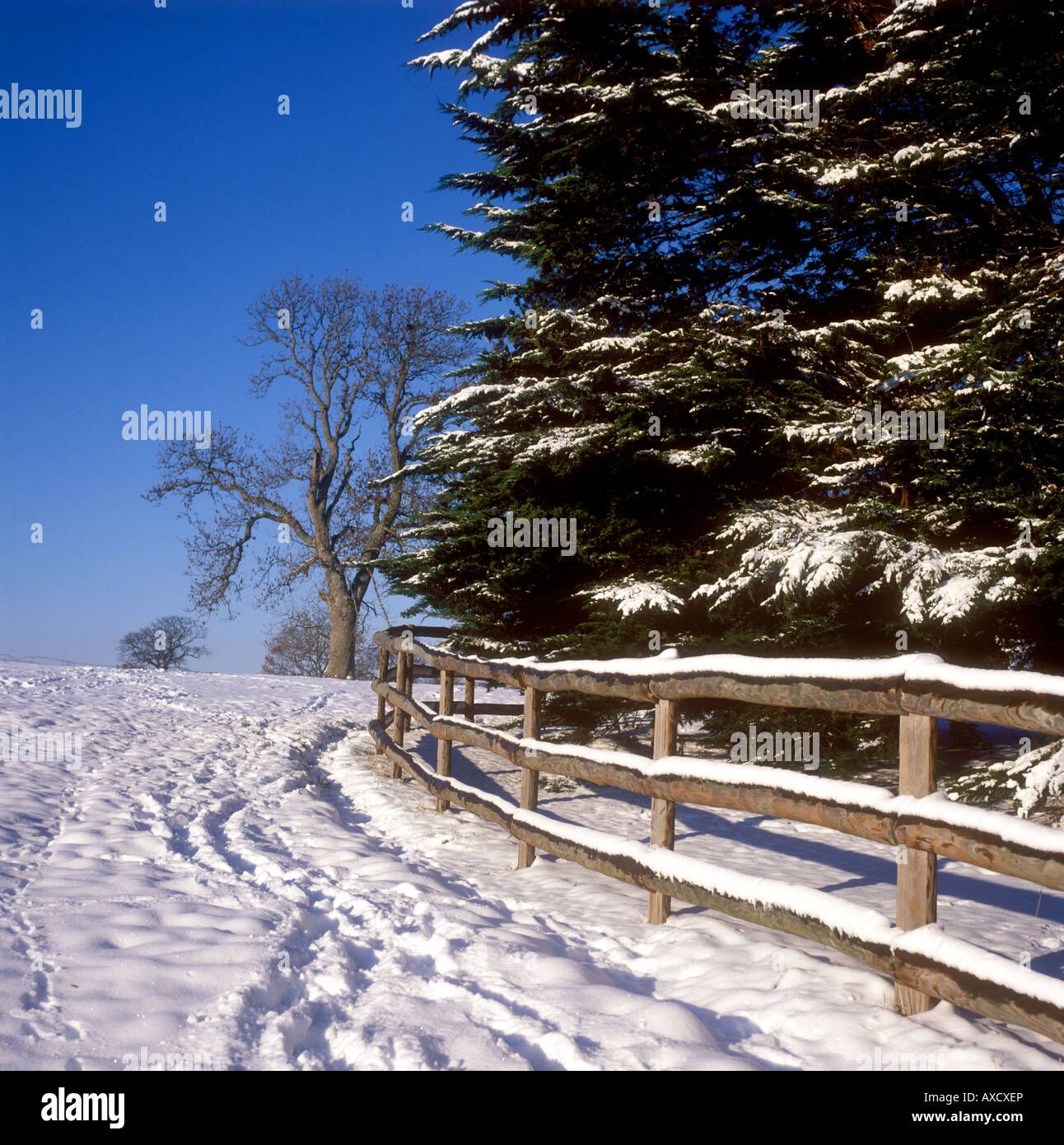 Winter snow on a sunny day at Misterton Stock Photo
