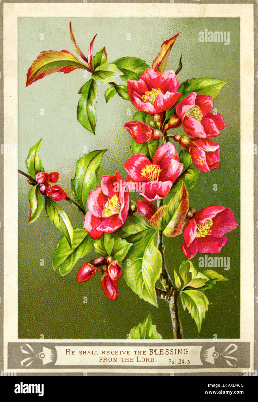 1880s Victorian Greetings Card - Stock Image