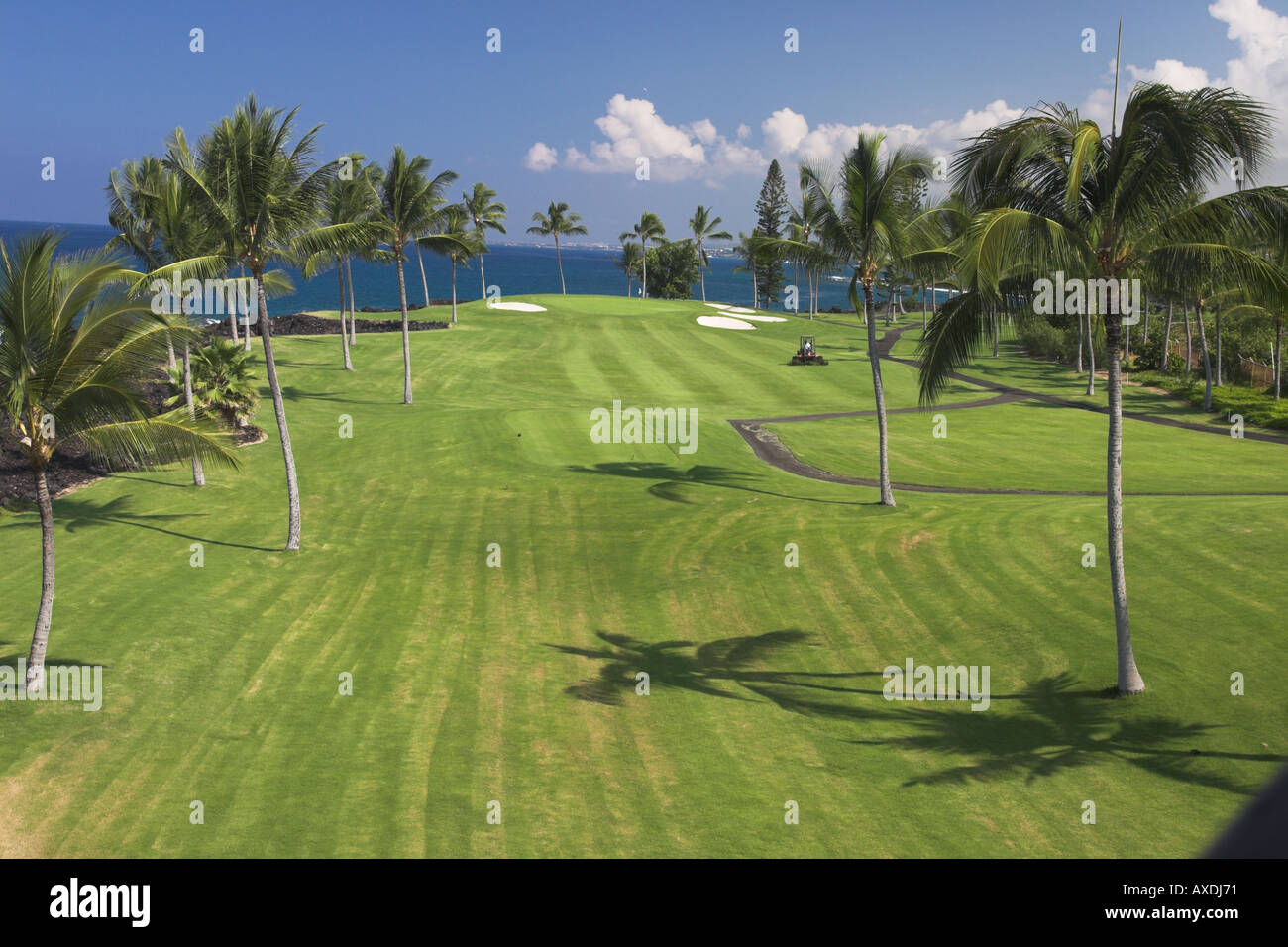 Fairway Cut (horizontal) - Stock Image