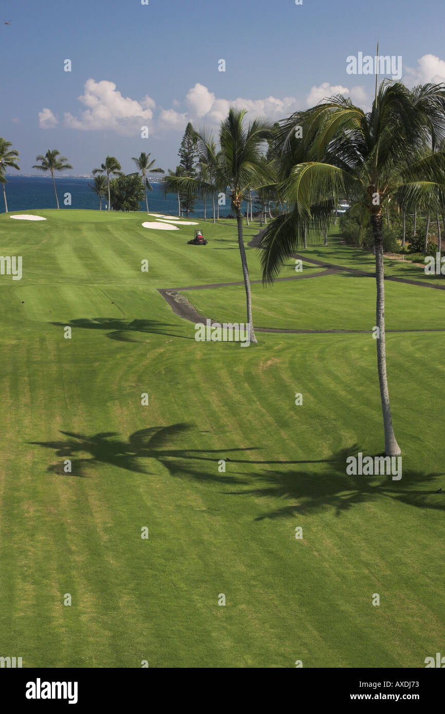 Fairway Cut (vertical) - Stock Image