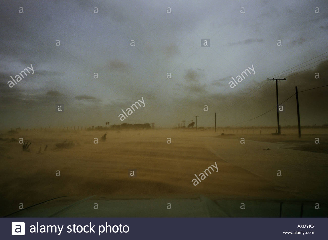Drivers point of view POV driving into dust storm approaching Rocky Point Mexico, the  sand storm was caused by Hurricane Nora - Stock Image