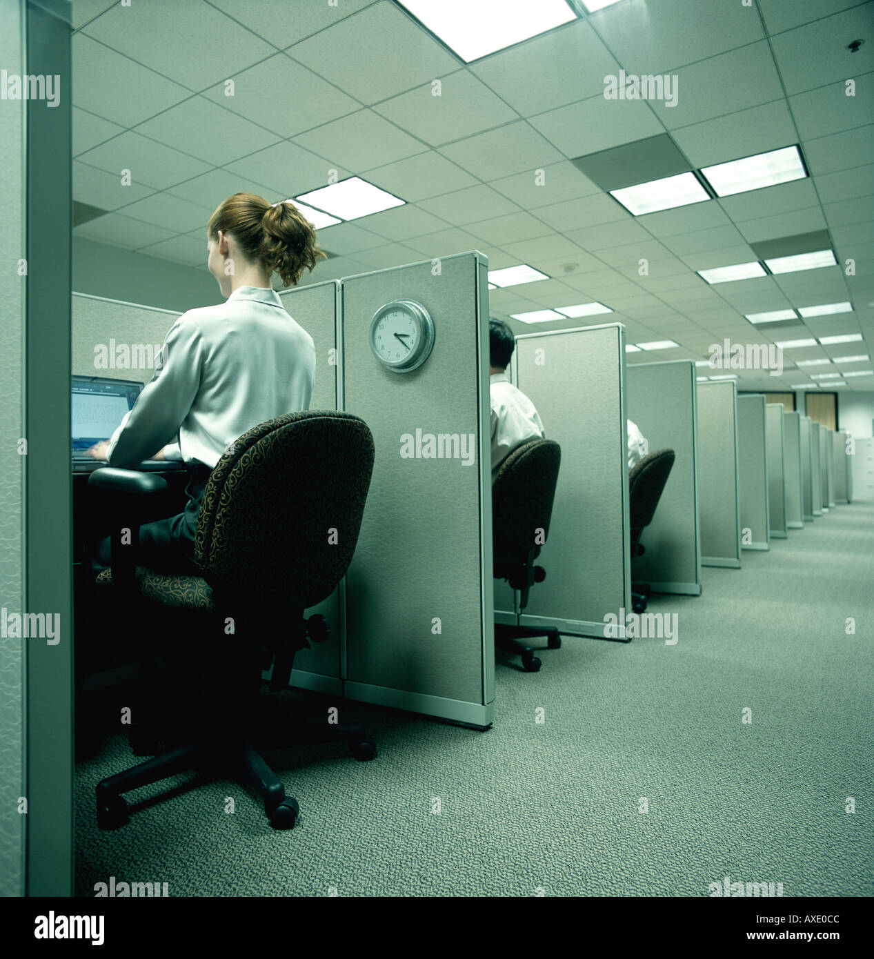 Robot like office workers slave away in small cubicles - Stock Image