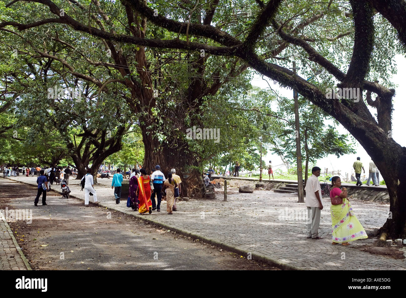 Calvethy River Road a small sea front promenade popular with local inhabitants Fort Kochi Cochin Kerala South India - Stock Image