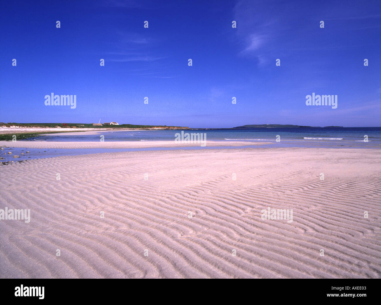 dh Newark Bay DEERNESS ORKNEY White sandy beach bay and island of Copinsay tranquil scotland Stock Photo