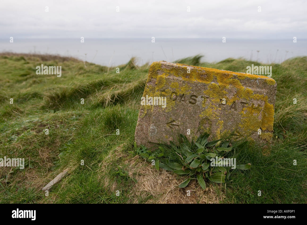 A lichen-covered stone marker showing a coastal path in Penwith, Cornwall, UK - Stock Image