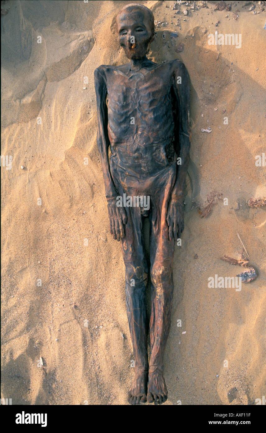 Achaeology and mummies at Dakhla Oasis, Egypt - Stock Image