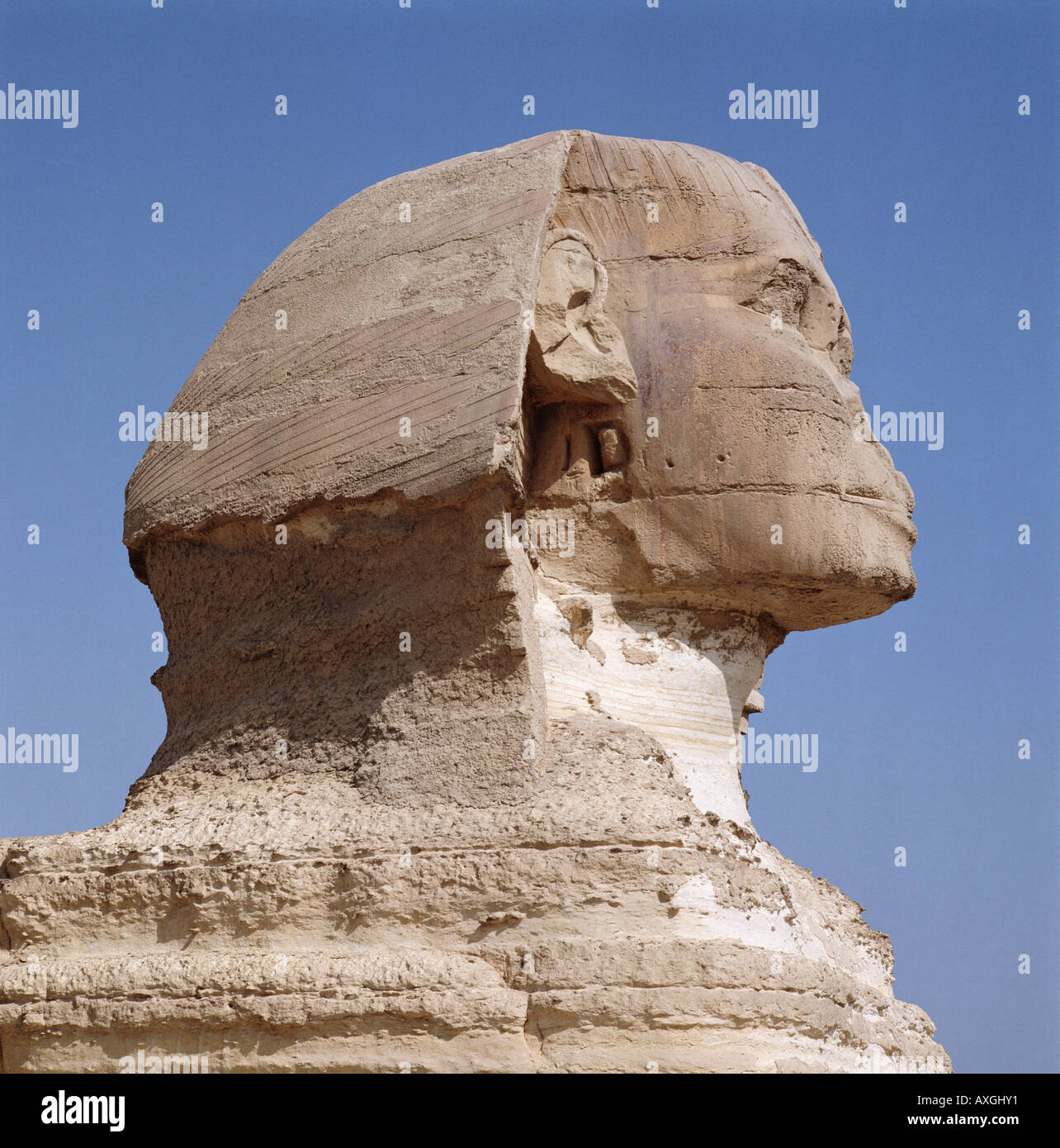 The head of the Great Sphinx Giza Cairo Egypt North Africa - Stock Image