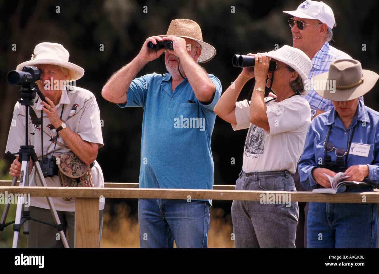 Bird watchers, Australia - Stock Image