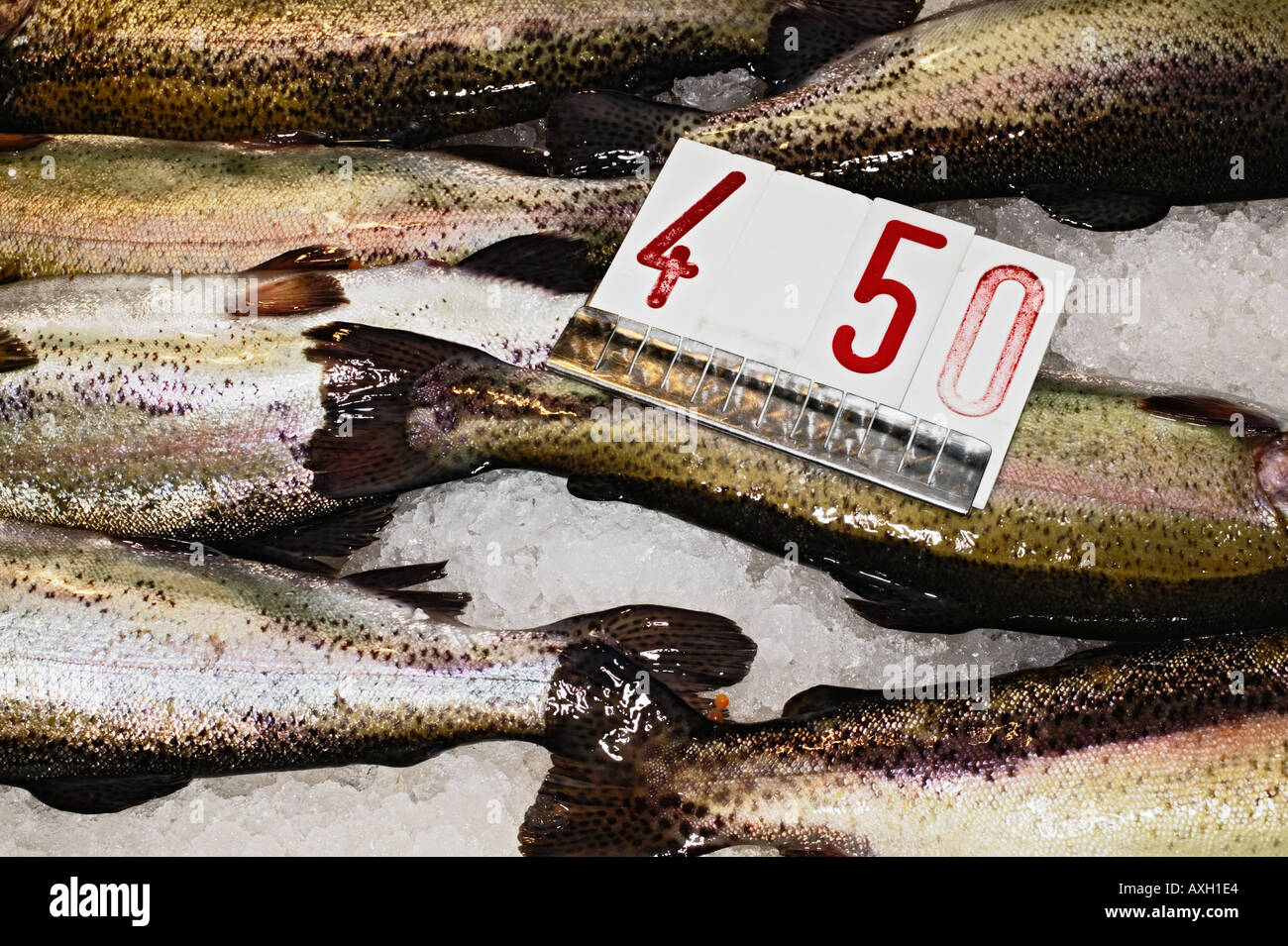 Display Of Fresh Fish At Fish Market In Venice - Stock Image
