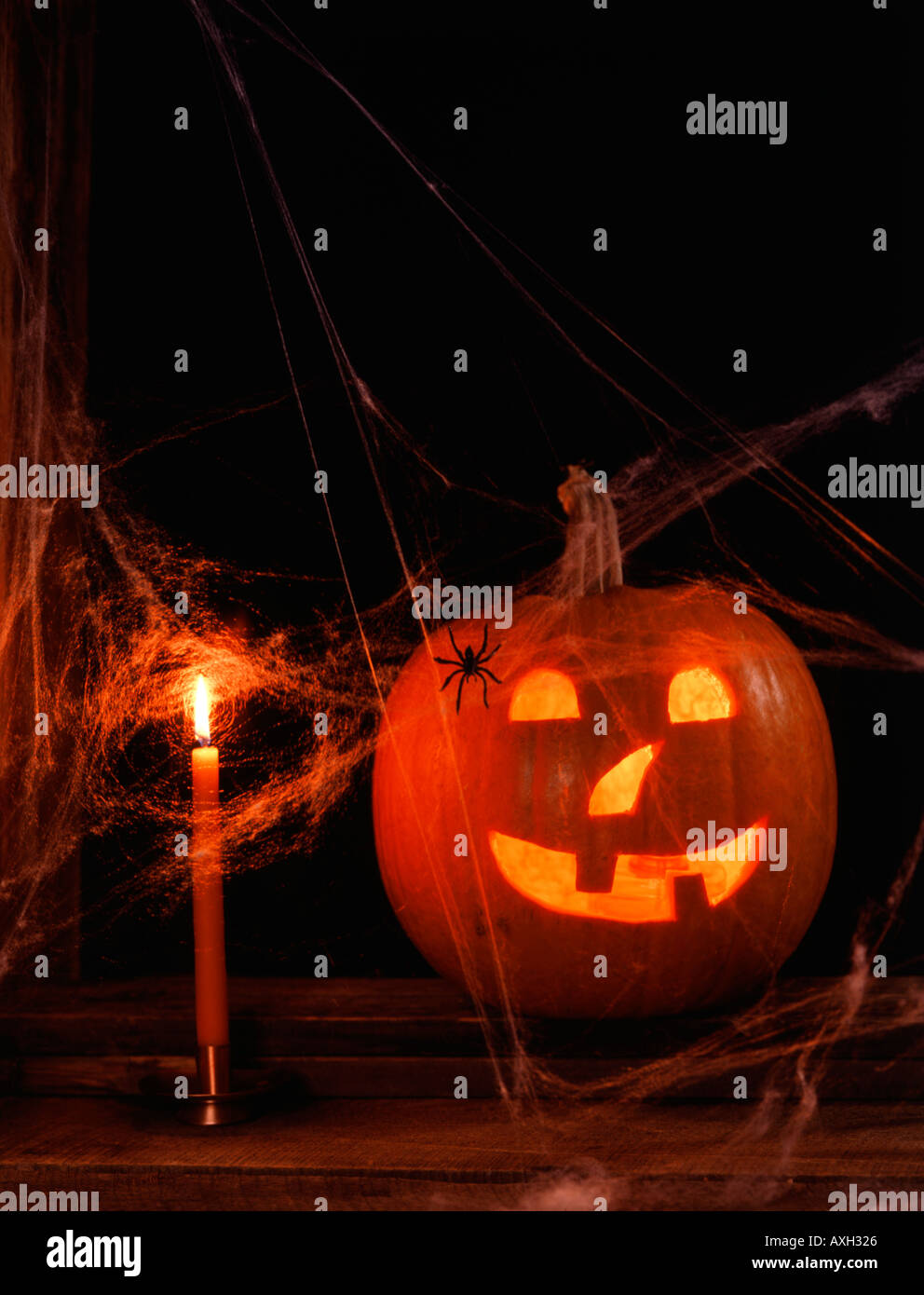 Grinning Jack O Lantern covered with spider webs and a spider with lighted candle nearby - Stock Image