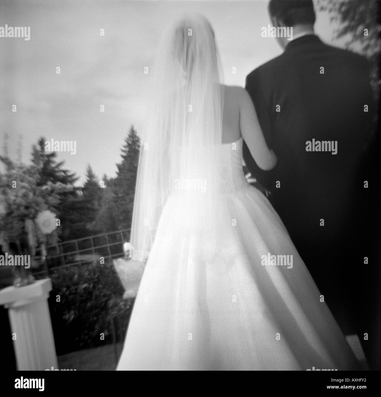 Bride and Groom from Rear - Stock Image