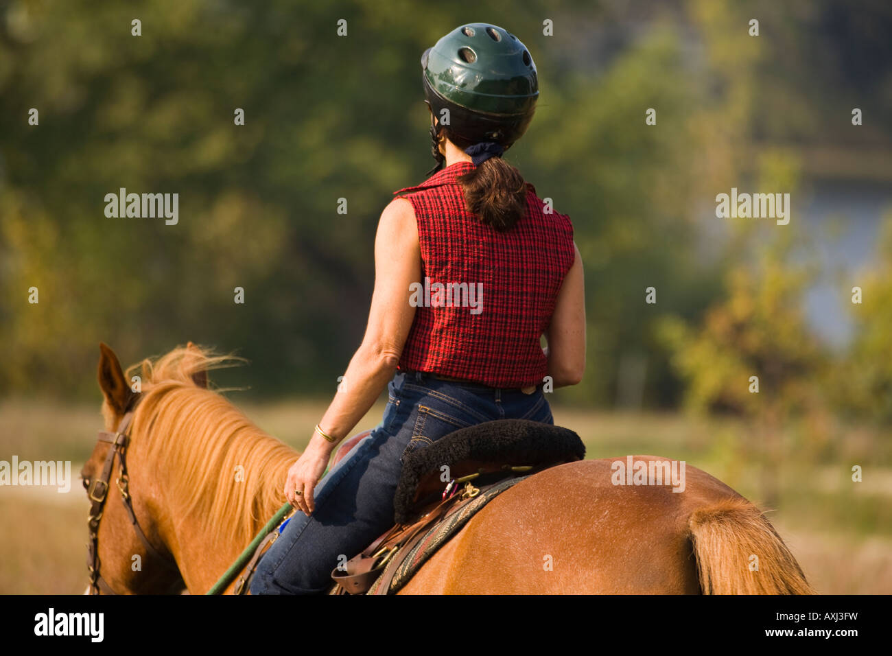 ILLINOIS Woman riding horse on mowed grass trail at Raven Glen forest preserve near lake - Stock Image