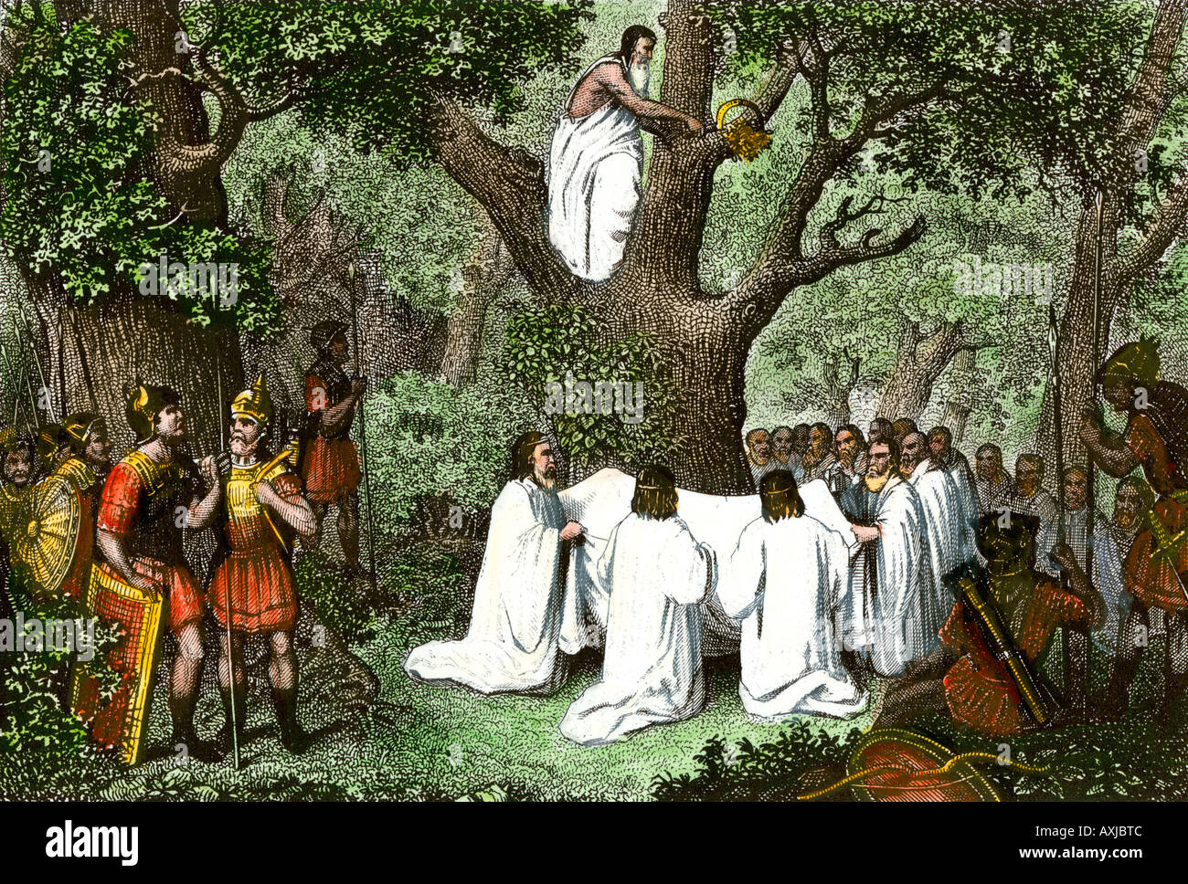 Druids cutting mistletoe in the forest watched by Roman soldiers. Hand-colored steel engraving - Stock Image