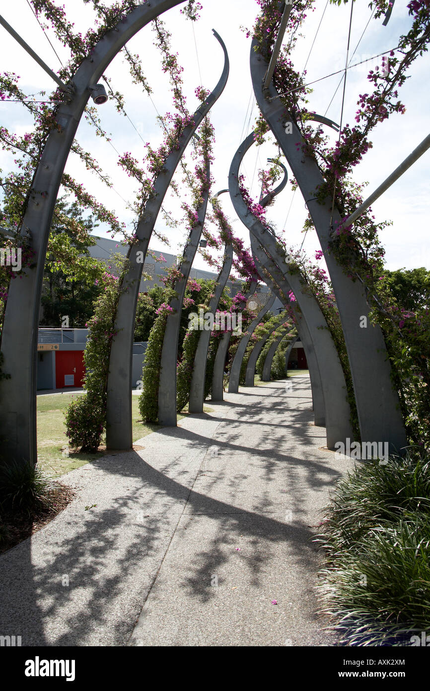 Sculptural contemporary Arbour walkway with bougainvilla on South Bank in Brisbane Queensland QLD Australia - Stock Image