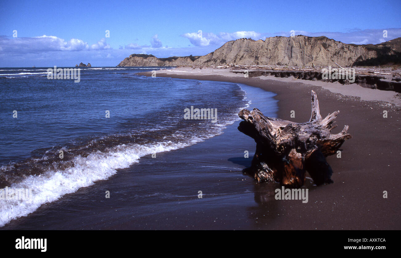 Tolaga Bay in the North Island of New Zealand - Stock Image