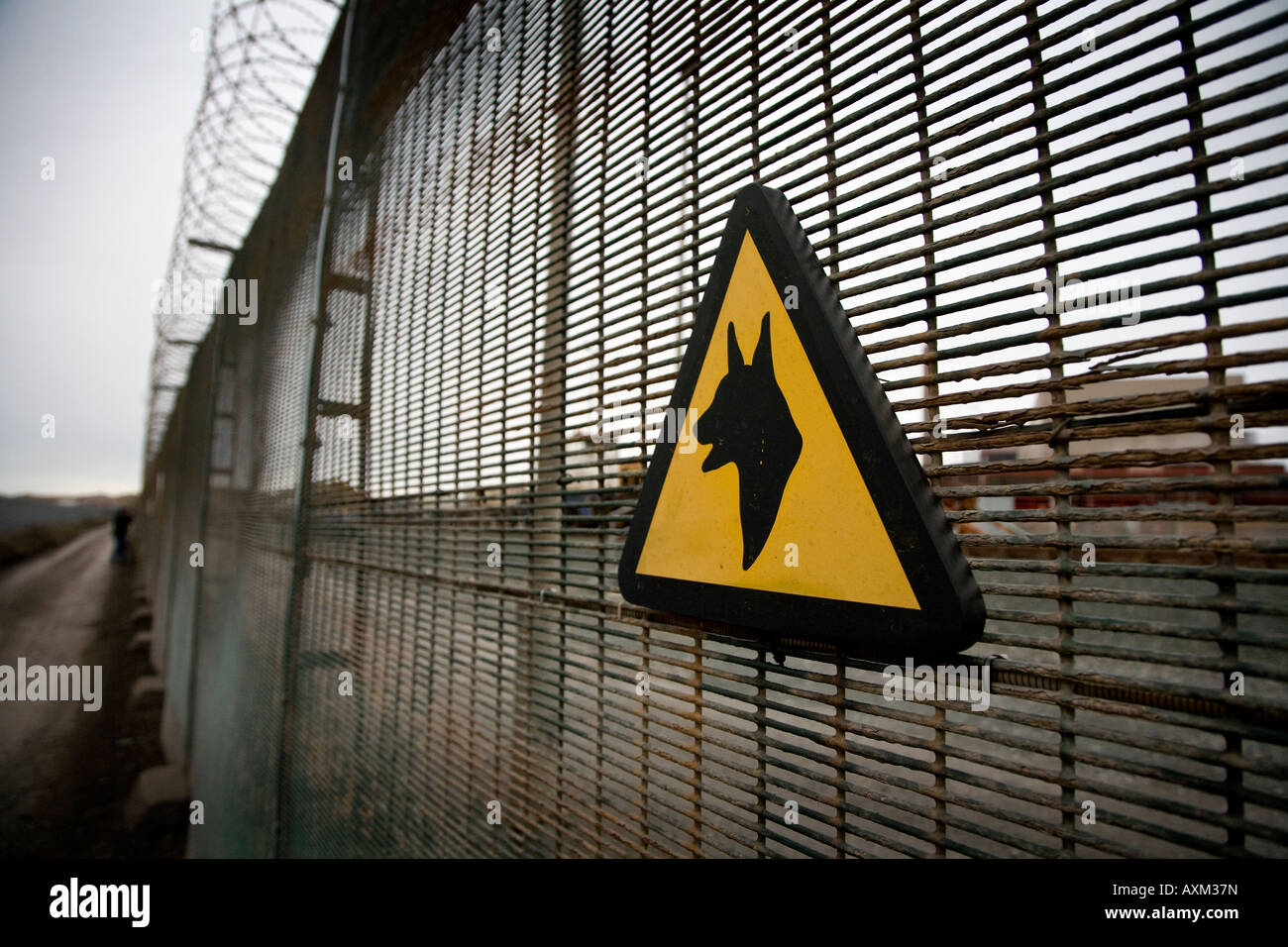 Warning guard dog sign on the perimeter fence of the Sellafield Nuclear plant Cumbria England UK - Stock Image