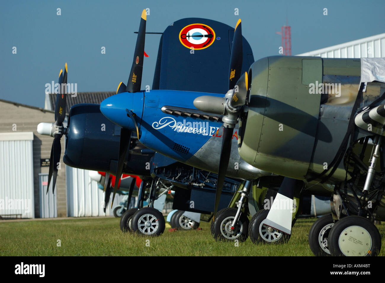 Alignment noses of wwII propellers fighters planes, french vintage air show, La Ferte Alais, France - Stock Image