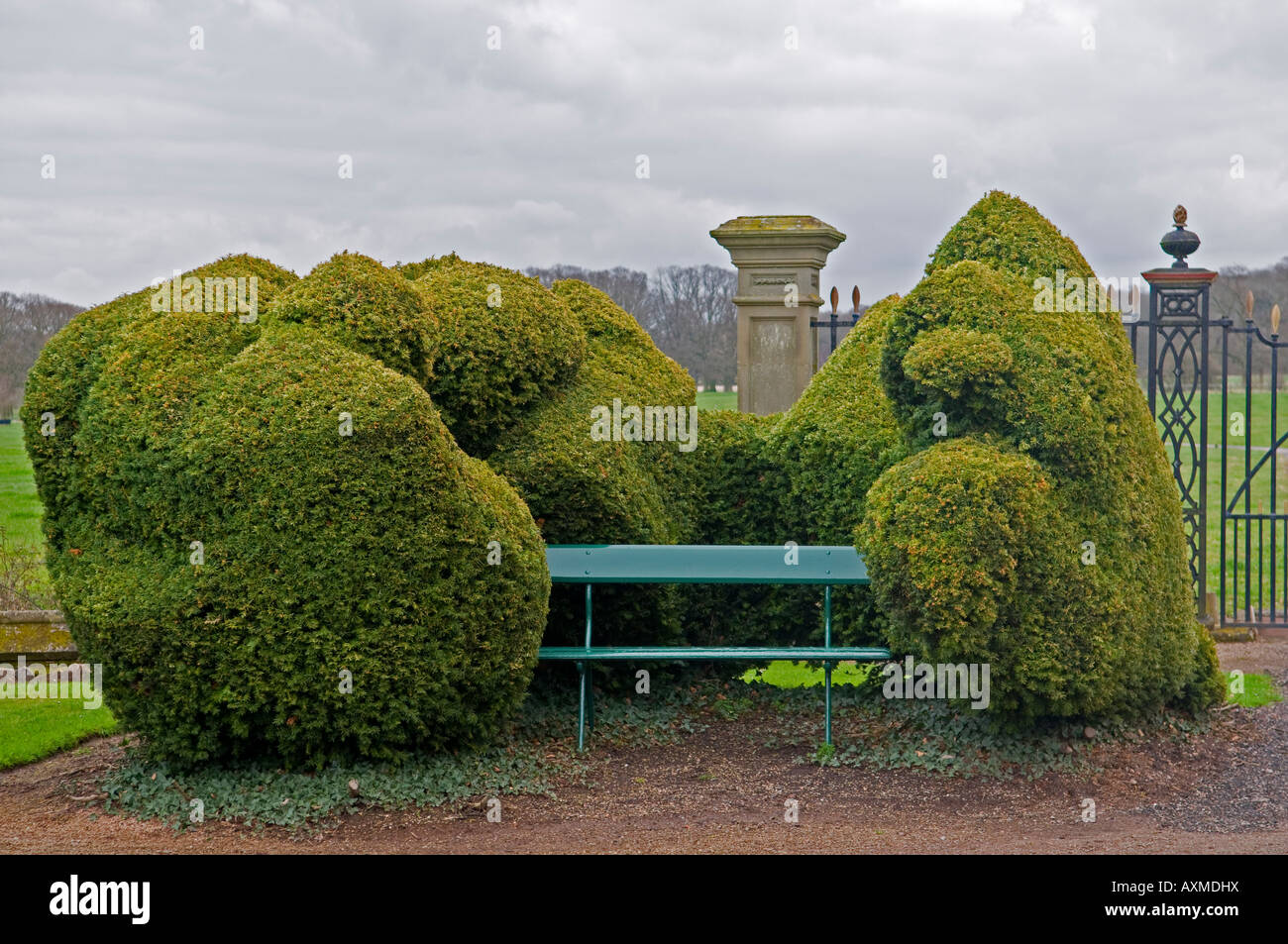 Bench surrounded by Yew hedge at Madresfield Court in Worcestershire - Stock Image