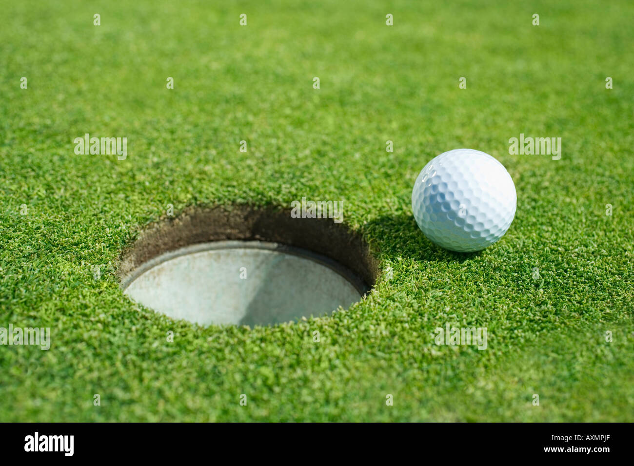 Golf ball near cup on putting green outdoors - Stock Image