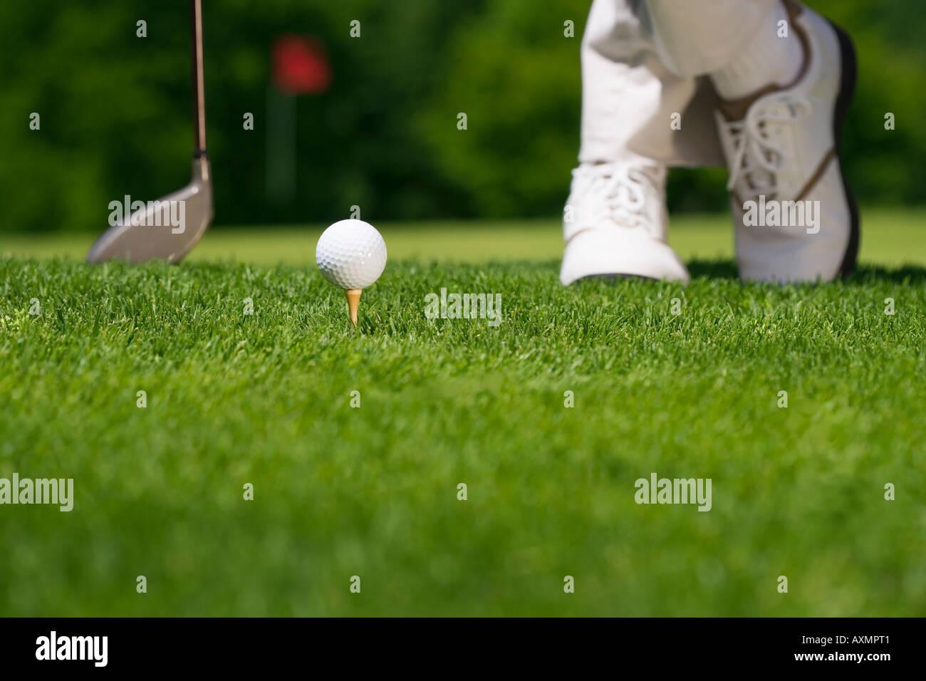 Golfer preparing to tee off - Stock Image