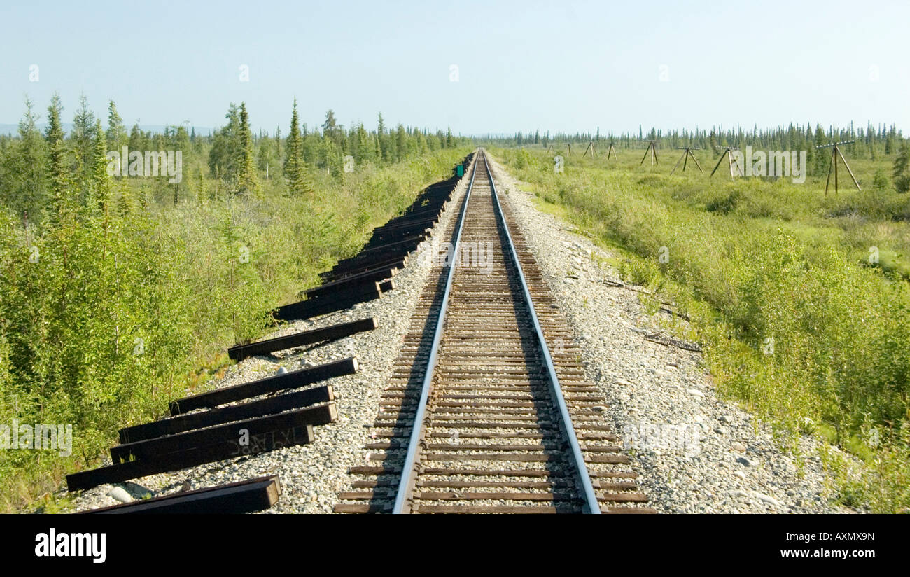 Train trip across the Alaska Rail Line - Stock Image