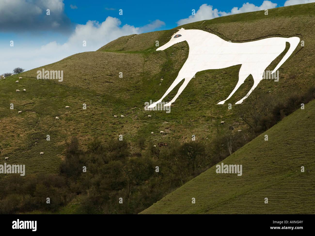 Westbury White Horse Stock Photo