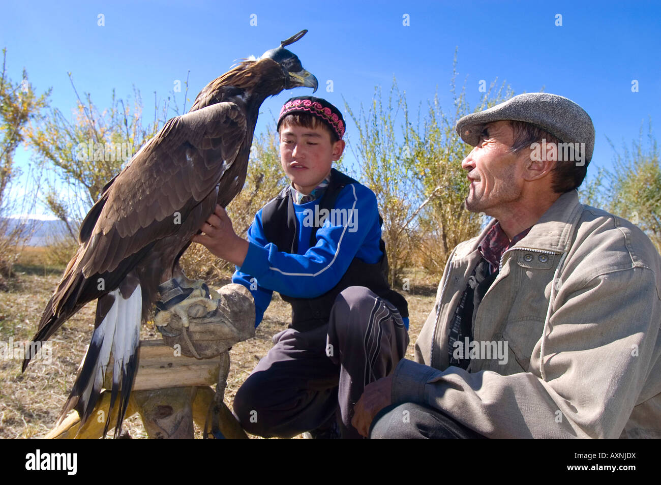 An eagle hunter trains his eagle and teaches his son the ancient Kazakh sport of eagle hunting Bayan Olgi Mongolia Stock Photo