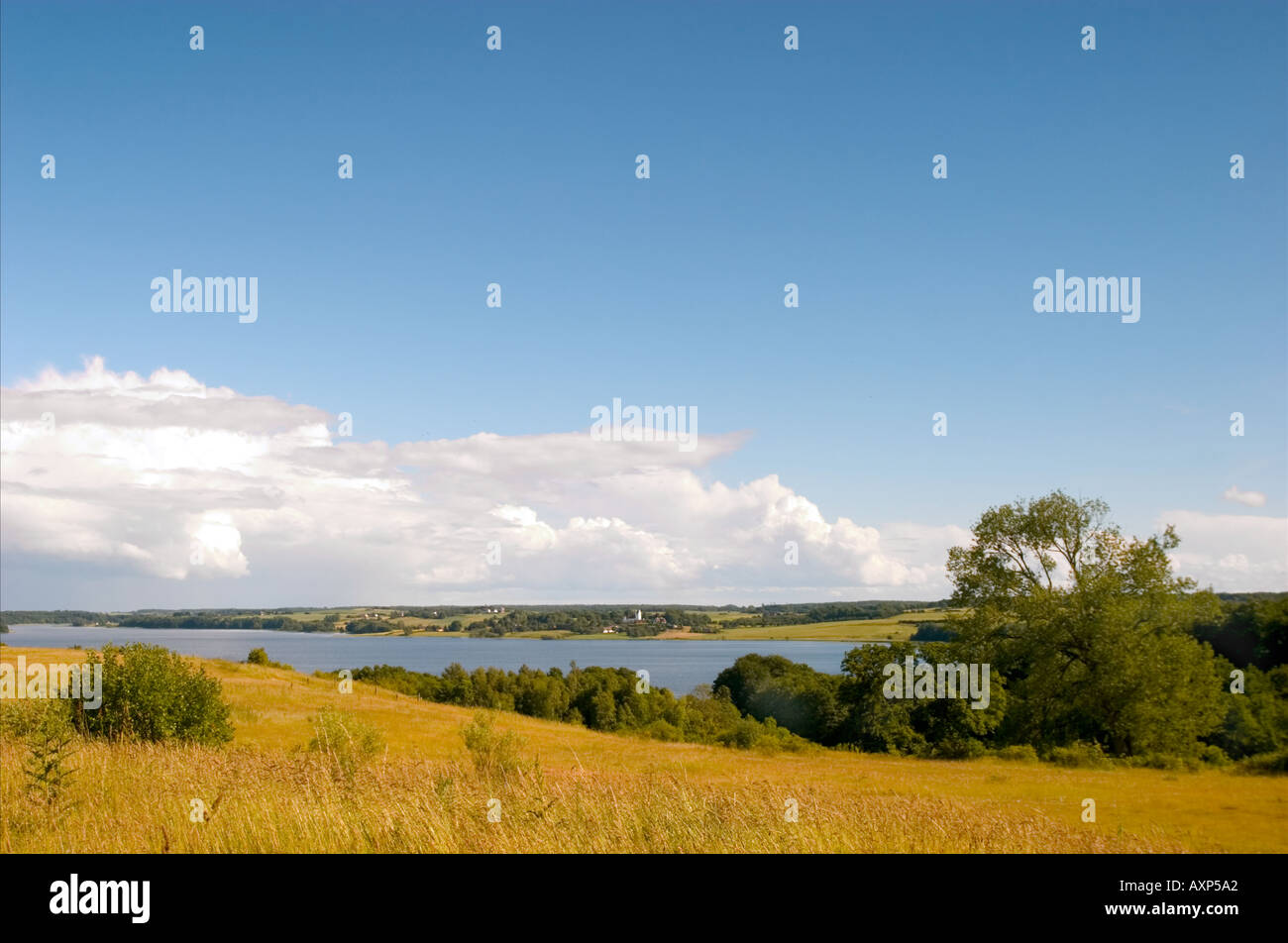 Danish summer landscape. Zealand. Denmark - Stock Image