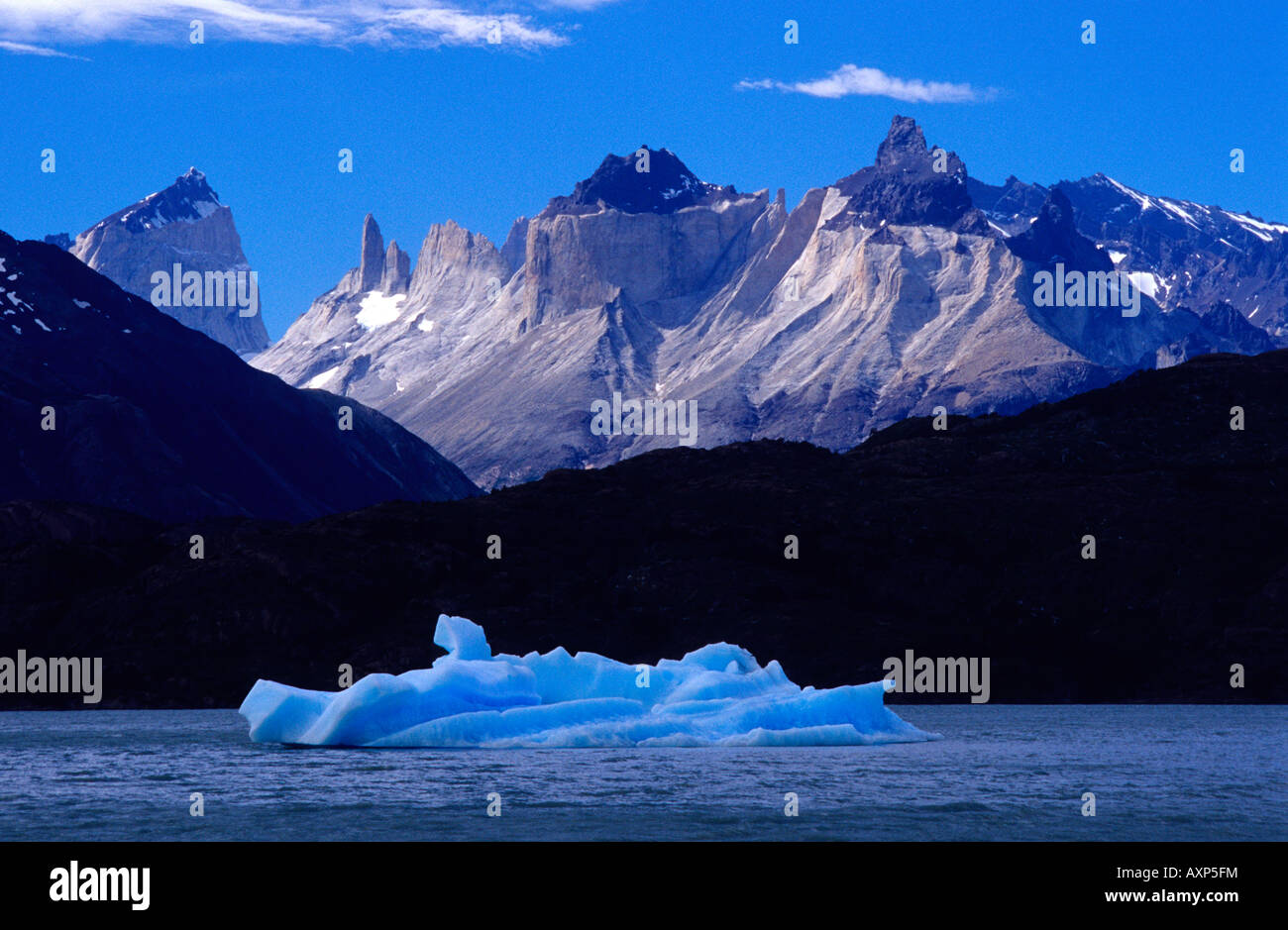 Iceberg on Lake Grey Torres del Paine National Park XII Region of Magallanes Chile South America - Stock Image