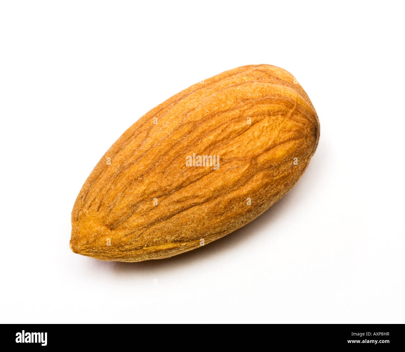 Almond nut kernel close up - Stock Image
