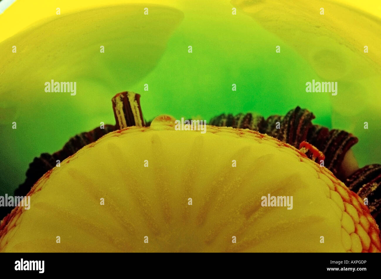 Macro of the interior of a yellow Water Lilly - Stock Image