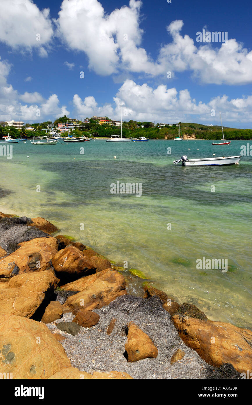 Fajardo Stock Photos Amp Fajardo Stock Images Alamy
