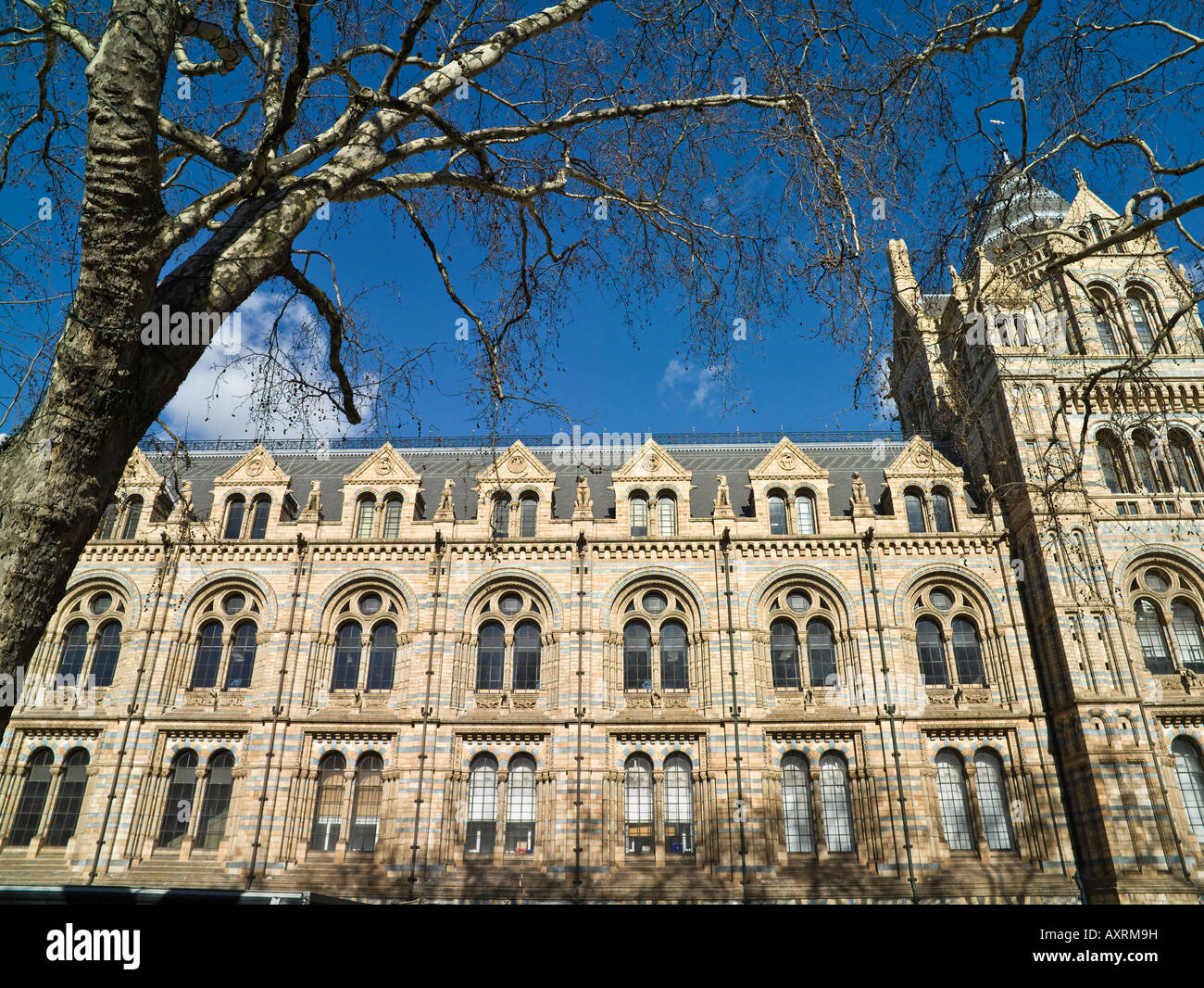 main facade, Museum of Natural History, London - Stock Image