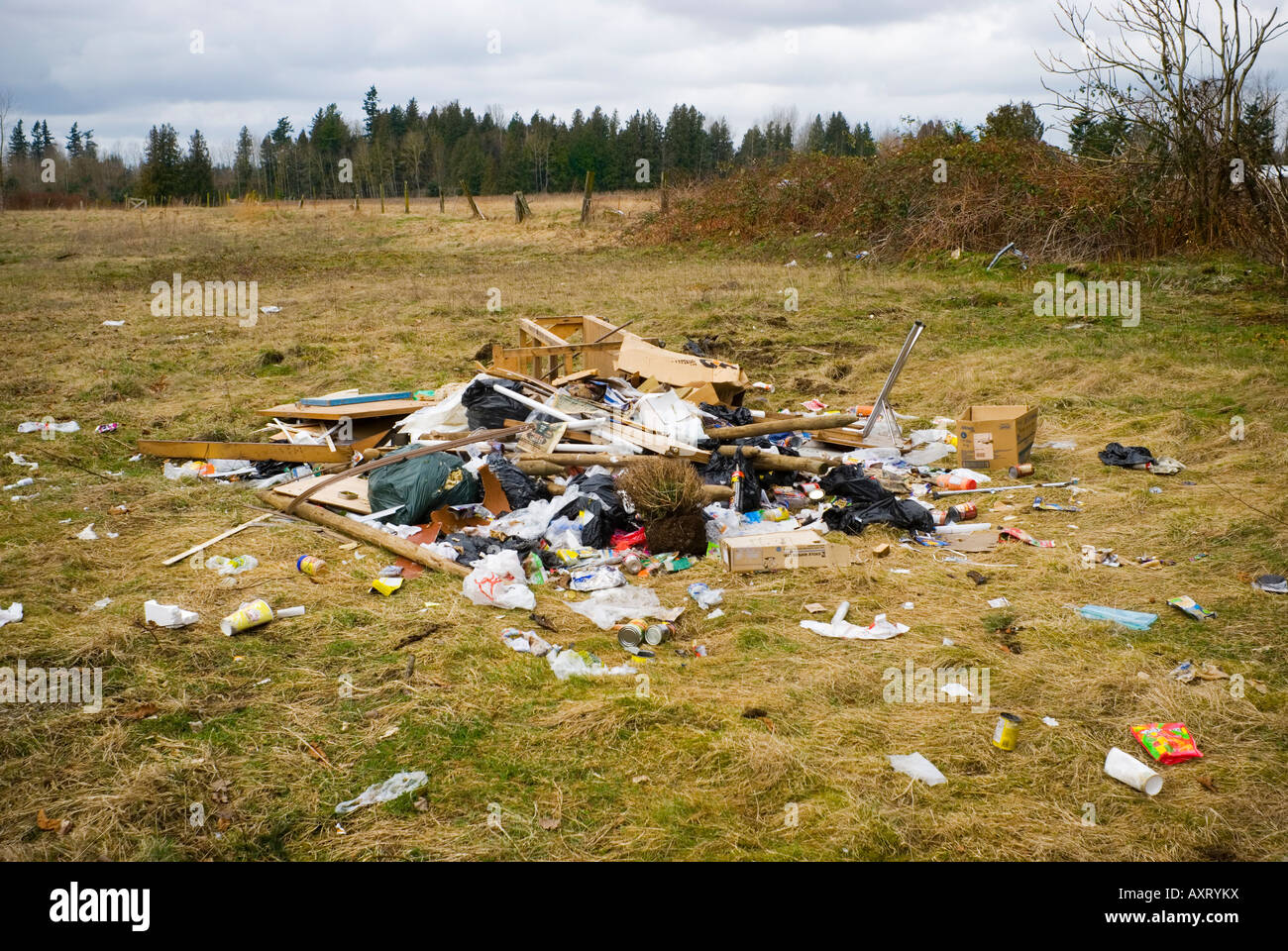 Illegally dumped garbage lies in a field - Stock Image
